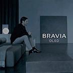 Hayakawa_SONY BRAVIA_en